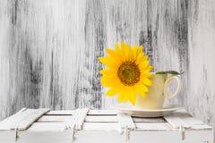 Hölzerne weiße Weinleseschale der Hintergrundstilllebenblumensonnenblume Lizenzfreies Stockfoto