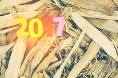 Hölzerne Zahl von 2017 auf Bambus verlässt für Feier des neuen Jahres Stockfotos