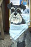Hölzerner Ausschnitt des Hundes Lizenzfreies Stockbild