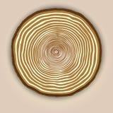 Hölzerner Beschaffenheitshintergrund des Vektors mit Baumringen Lizenzfreie Stockbilder