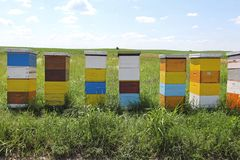 Hölzerner Bienenstock Lizenzfreies Stockfoto