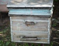 Hölzerner Bienenstock im Bienenhaus Lizenzfreie Stockfotos