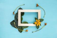 Hölzerner Bilderrahmen verzieren mit grünem Blatt und gelber Blume Stockbilder