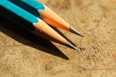 Hölzerner Bleistift lizenzfreies stockfoto