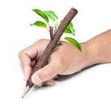 Hölzerner Bleistift in der Hand Lizenzfreie Stockbilder