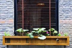 Hölzerner Blumenkasten im Fenster Stockfoto