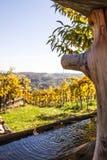 Hölzerner Brunnen mit frischem klarem Wasser garten herein mit Weinbergen Lizenzfreie Stockfotografie