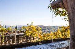Hölzerner Brunnen mit frischem klarem Wasser garten herein mit Weinbergen Stockbilder