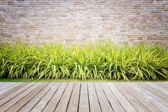 Hölzerner Decking oder Bodenbelag und Anlage im Garten dekorativ lizenzfreie stockfotografie