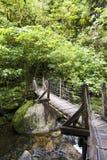 Hölzerner Fußweg über Brücke Stockfotos