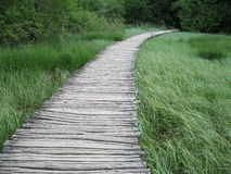 Hölzerner Fußweg Stockfoto