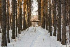 Hölzerner Gazebo in einem schneebedeckten Wald Lizenzfreies Stockfoto