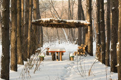 Hölzerner Gazebo in einem schneebedeckten Wald Stockfotografie