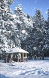 Hölzerner Gazebo im Wald im Winterschneeblizzard Stockfotos