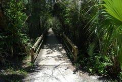 Hölzerner Gehweg durch die Sumpfgebiete Stockfotos