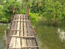 Hölzerner Gehweg im Dschungel Stockfoto
