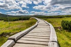 Hölzerner Gehweg im Nationalpark Krkonose, Tschechische Republik Stockbilder