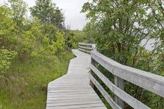 Hölzerner Gehweg im Naturpark Stockfotos
