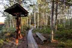Hölzerner Gehweg im Wald Lizenzfreie Stockfotografie