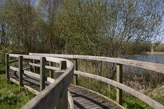 Hölzerner Gehweg in Sumpfgebieten Somerset-wild lebender Tiere, Somerset, Großbritannien Lizenzfreies Stockfoto