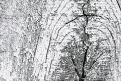 Hölzerner Hintergrund Abstrakte Abbildungauslegung Stockbilder