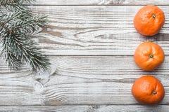 Hölzerner Hintergrund Albi Tannenzweiggrün Orangen Winterkarte Raum für Weihnachten oder neues Jahr Abbildung innen Weihnachten u Stockfotografie