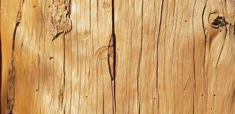 Hölzerner Hintergrund Alte Baumbeschaffenheit Große Sprünge, trockenes Holz stockfotografie