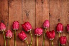 Hölzerner Hintergrund Browns mit roten Tulpen Stockfoto