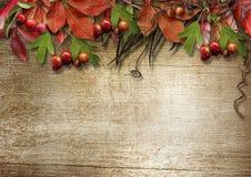 Hölzerner Hintergrund der Herbstweinlese mit Platz für Ihr tex Lizenzfreie Stockbilder