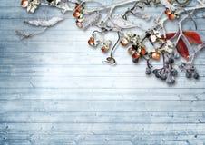 Hölzerner Hintergrund der Weinlese mit schneebedeckten Niederlassungen und Beeren Stockbilder