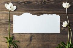 Hölzerner Hintergrund des Brauns mit schönem weißem Frühling blüht a Stockfoto