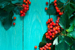 Hölzerner Hintergrund des Herbstes mit Weißdornbeeren Stockbilder