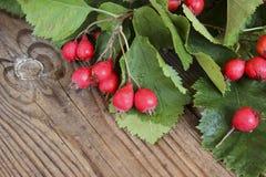 Hölzerner Hintergrund des Herbstes mit Weißdornbeeren Lizenzfreie Stockfotografie