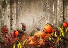 Hölzerner Hintergrund des Schmutzes mit Herbstlaub und Kürbis Lizenzfreie Stockfotografie