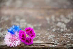 Hölzerner Hintergrund mit Blumen lizenzfreie stockfotos