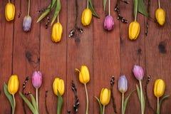 Hölzerner Hintergrund mit den gelben und rosa Tulpen Stockbilder