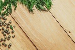 Hölzerner Hintergrund mit Dill- und Pfefferrahmen Stockbilder