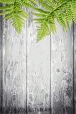 Hölzerner Hintergrund mit grünen exotischen Blättern Stockbild