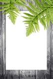 Hölzerner Hintergrund mit grünen exotischen Blättern Lizenzfreie Stockbilder