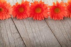 Hölzerner Hintergrund mit orange Gerberablumen Lizenzfreie Stockbilder