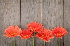 Hölzerner Hintergrund mit orange Gerberablumen Lizenzfreie Stockfotos