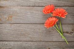 Hölzerner Hintergrund mit orange Gerberablumen Stockbilder