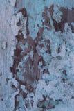 Hölzerner Hintergrund mit Schalenfarbe lizenzfreie stockfotos