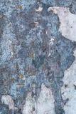Hölzerner Hintergrund mit Schalenfarbe stockfoto