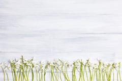 Hölzerner Hintergrund mit Schneeglöckchenrahmen an der Spitze eines Bildes stockbild