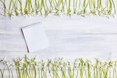 Hölzerner Hintergrund mit Schneeglöckchenrahmen und leerem Notizblock stockbilder