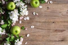 Hölzerner Hintergrund mit weißen Blüten und grünen Äpfeln stockfotografie