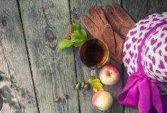 Hölzerner Hintergrundrest des Herbstes im Park, Lesung, Weg mit Tasse Tee, Äpfel und Handschuhe und Hut lizenzfreie stockfotos