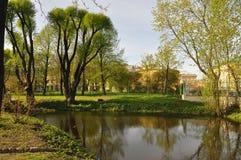 Hölzerner Neigungswasser-Spiegelblick Sommer hitze grün gras Stockbild