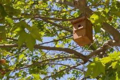Hölzerner Nistkasten, der am Baum hängt stockfotografie